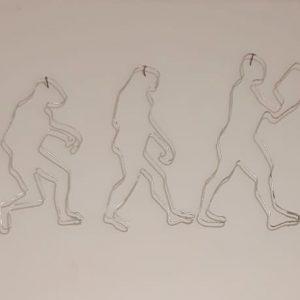 אבולוציה