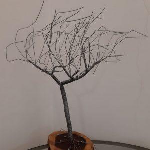 עץ בשלכת