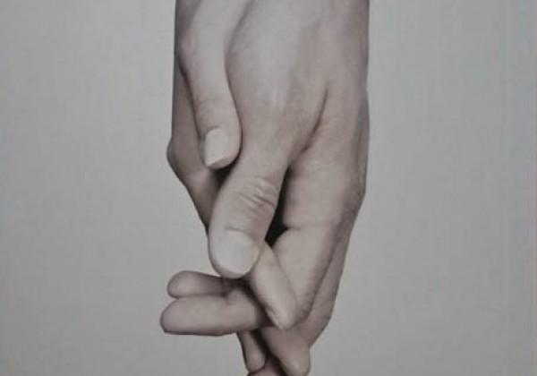 הר האושר / אמיר גוטפרוינד